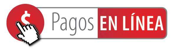 PAGOS-EN-LINEA $(1)
